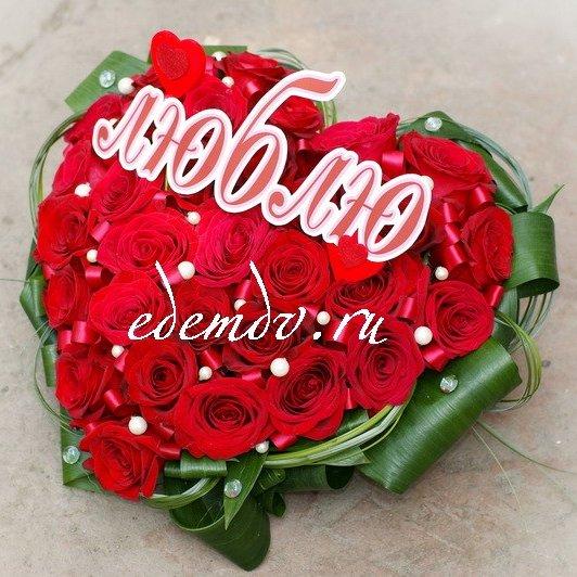 Цветы в знак примирения фото
